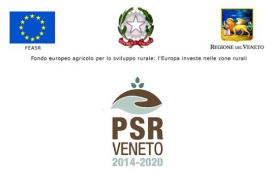 PSR Venezia – Corsi